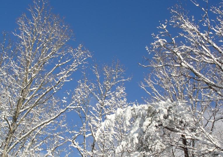 Winter Blue Sky
