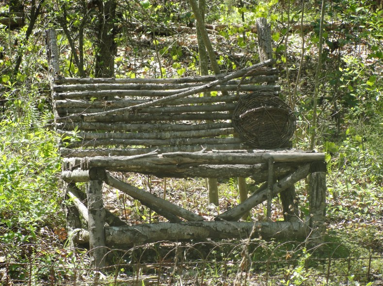 Tree Limb Bench, (c)2012, Joni Beach.